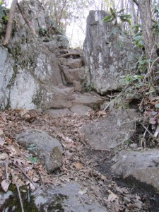 The rocky path to the top of Albert Mountain.
