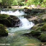 Sit and meditate and see where the magic of the waterfalls on Kimsey Creek take you.