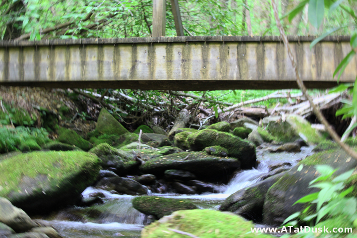 Weathered and well-trodden, this bridge crosses a feeder branch of Kimsey Creek.