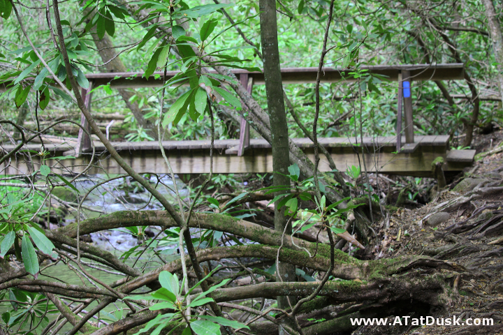 Nicely tucked within the thick rhododendron, a foot bridge crosses Kimsey Creek.